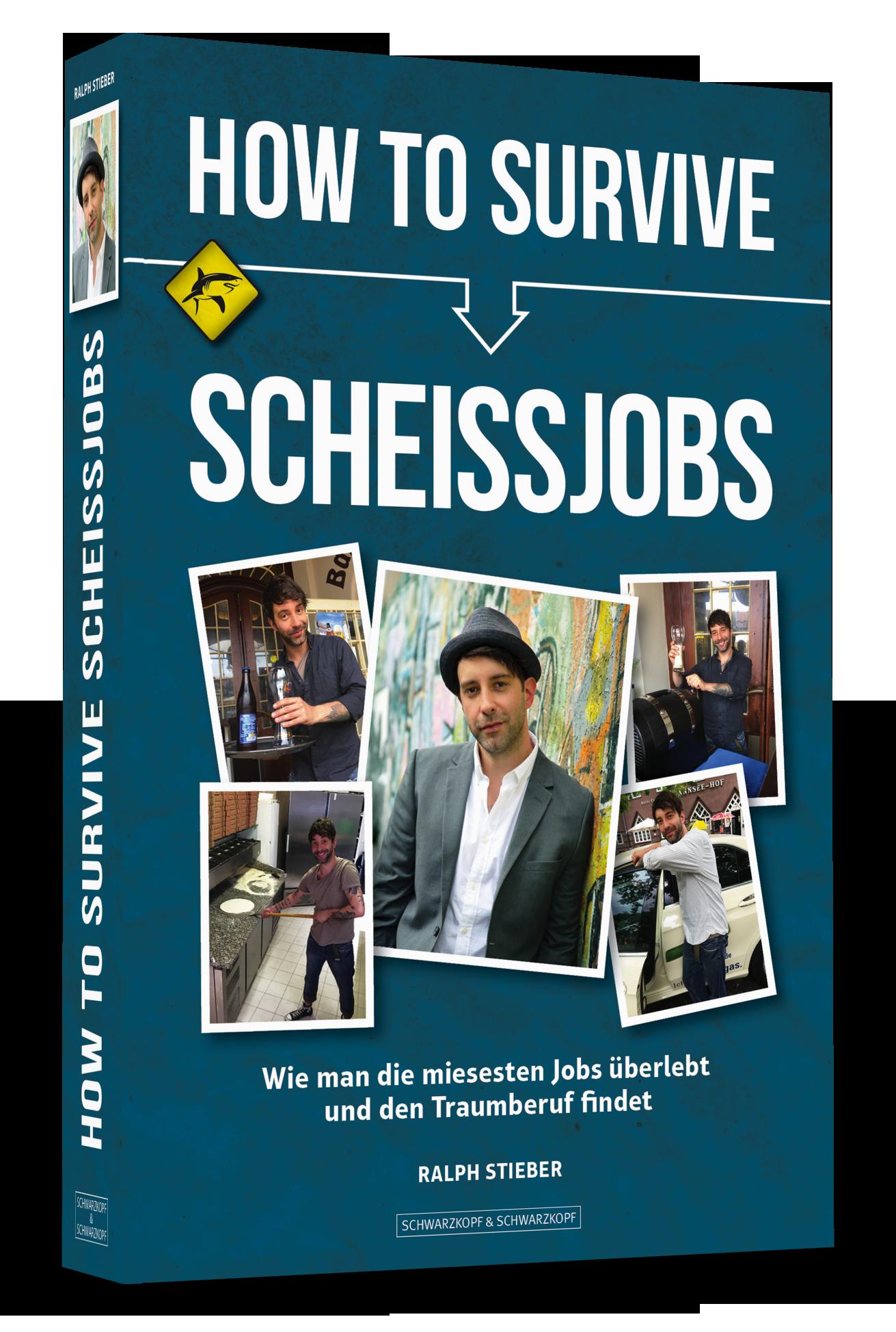 """Sendung 45: """"Scheiss-Jobs"""" vom 19.12.2016"""